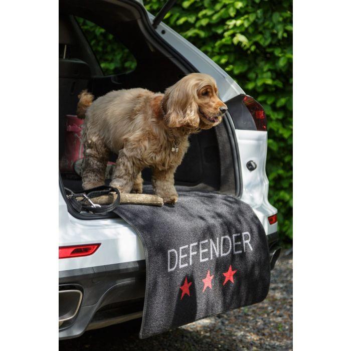 Boot Defender Mat