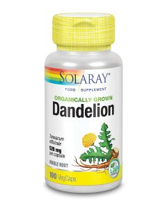 Organically Grown Dandelion 520mg