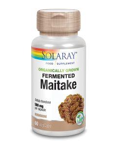 Organically Grown Fermented Maitake Mushroom 500mg