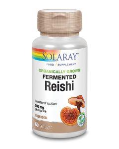 Organically Grown Fermented Reishi Mushroom 500mg