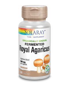 Organically Grown Fermented Royal Agaricus Mushroom 500mg