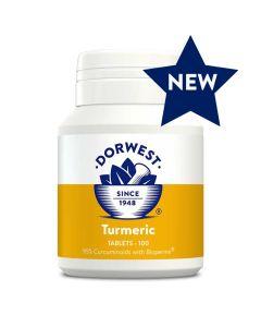 Turmeric 100 tablets