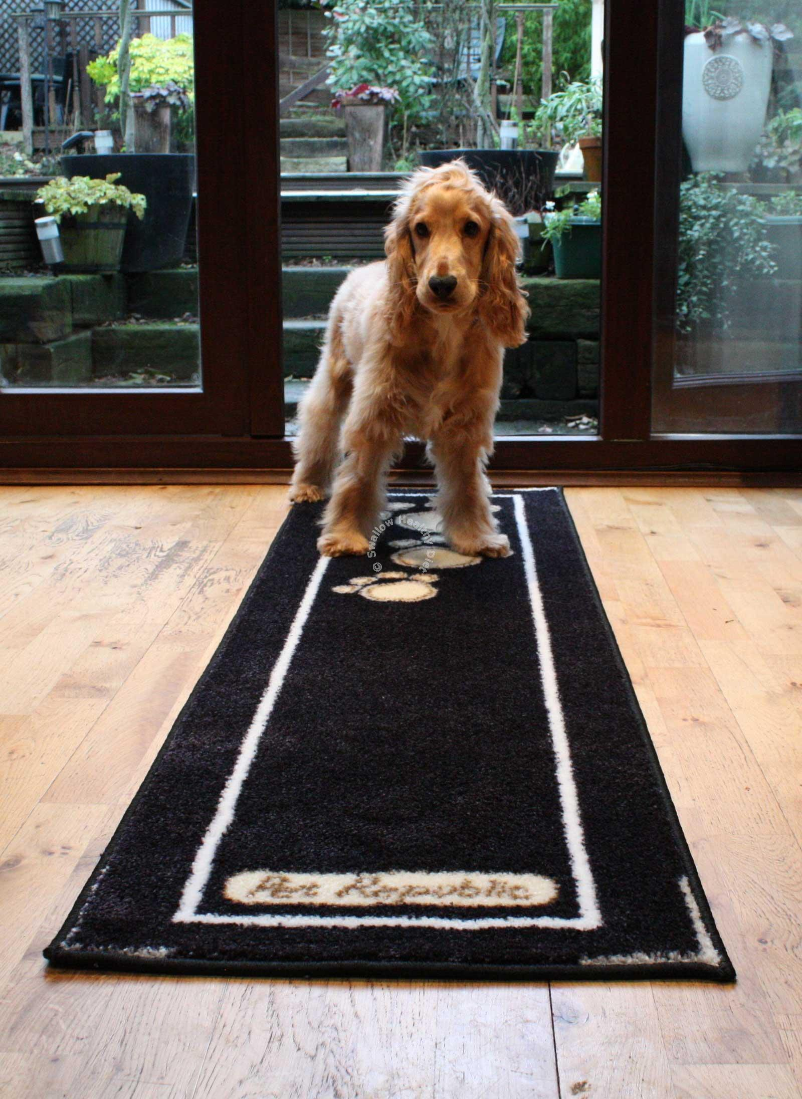 wooly dog snuffle dogs floor floors mat official for by the